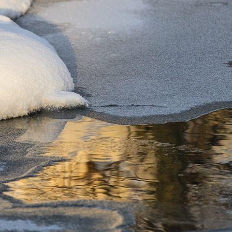 longinoja-malmi-naturephoto-naturephotography-canoneos7dmark2-helsinki-finland-snow-ice-talvi-winter