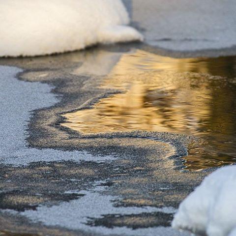 longinoja-malmi-naturephoto-naturephotography-helsinki-finland-winter-talvi-ice-snow