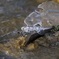 ice-jaa-longinoja-spring-kevat-nature-naturephotography-naturephoto-helsinki-finland-canoneos7dmark2