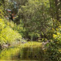 longinoja-alamalmi-malmi-naturephotography-naturelover-urbannature-nature-naturephotography-helsinki