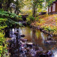 longinoja-river-riverside-urbannature-naturephotography-malmi-alamalmi-helsinki-finland-suomenkesa-s