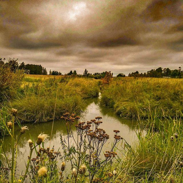 longinoja-autum-field-fields-skylovers-sky-river-clouds-honor8-alamalmi-helsinki-urbannature-huaweis