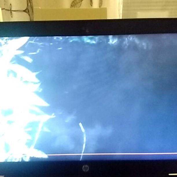 @urbaaniretkeilija kävi Longinojan Kutukävelyllä. Tässä hänen upea video aiheesta: https://youtu.be/Fh_1j8unsAc