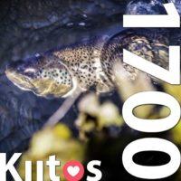fb-sivuilla (www.facebook.com/longinoja) jo 1700 tykkääjää! Kattavuus yli 30000! @helviestinta Kuva: Miikka Pulliainen