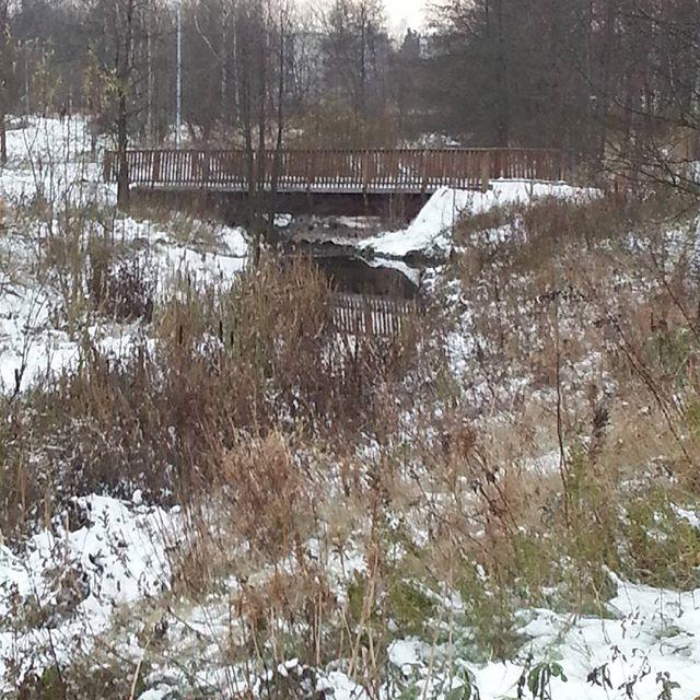 longinoja-talvitulee-lunta-snow-sno