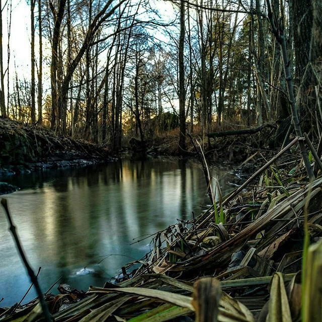 longinoja-river-creek-urbannature-urbannaturelovers-naturephotography-nature-alamalmi-malmi-honor8-h-1