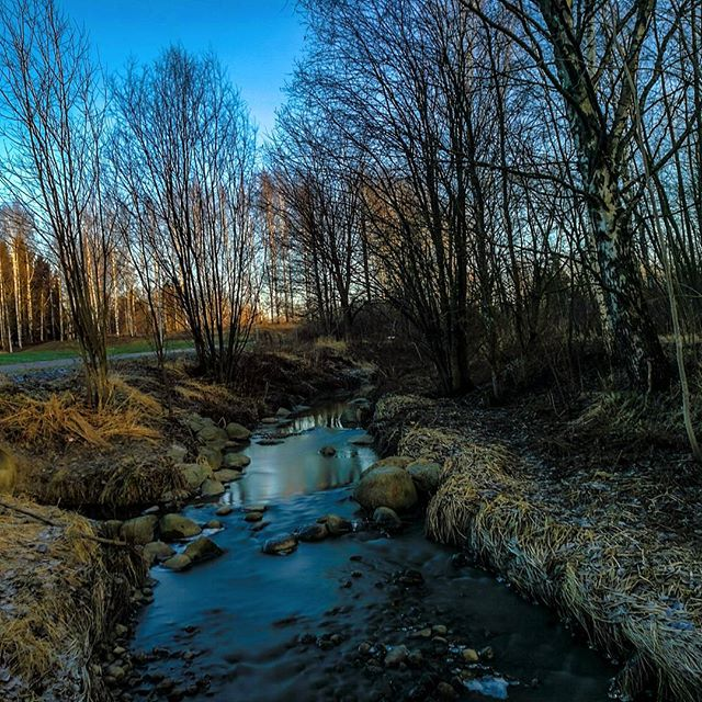 longinoja-river-creek-urbannature-urbannaturelovers-stream-naturephotography-nature-alamalmi-malmi-h