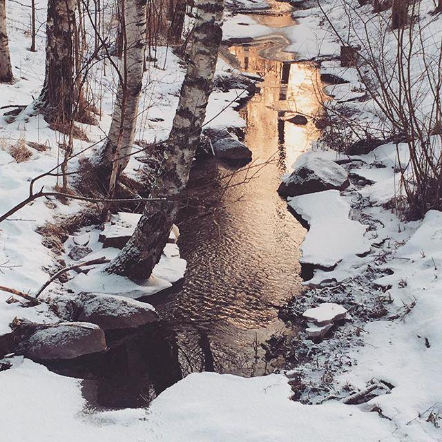 longinoja-tapanila-talvi-auringonlasku-sunset-winter-helsinki-lahiluonto-suomiretki-naturelovers