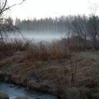 usva-mist-longinoja-tammikuunekakuva