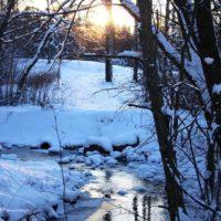 Talvinen pakkaspäivä