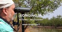 ilpo-kuronen-longinoja-teksti