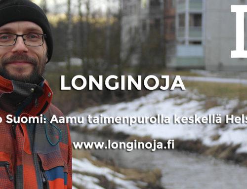 Radio Suomi: Aamu taimenpurolla keskellä Helsinkiä