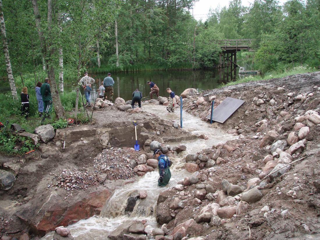 Talkoot Vihtijoen yhden kalatien rakentamiseksi 2008