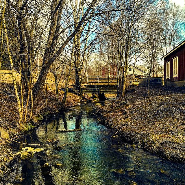 longinoja-kevat-spring-creek-river-stream-urbannaturelovers-urbannature-malmi-alamalmi-honor8-honorf