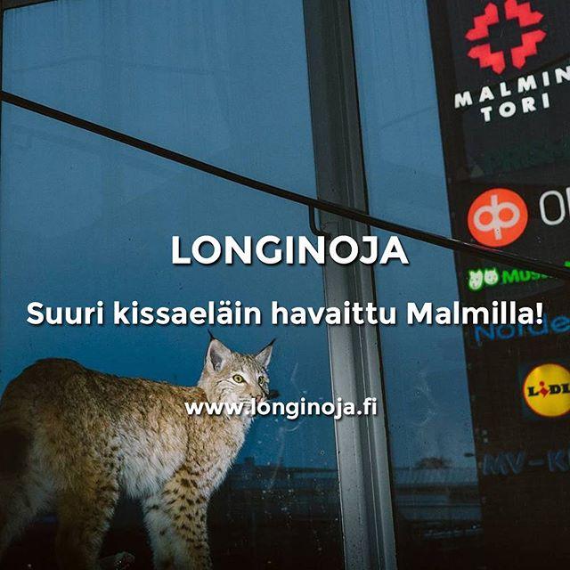 Upea luontohavainto Longinojalta. Lue lisää:www.longinoja.fi