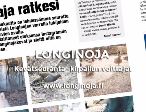 Longinoja – Kevätseuranta 2017 valitut viikonkuvat
