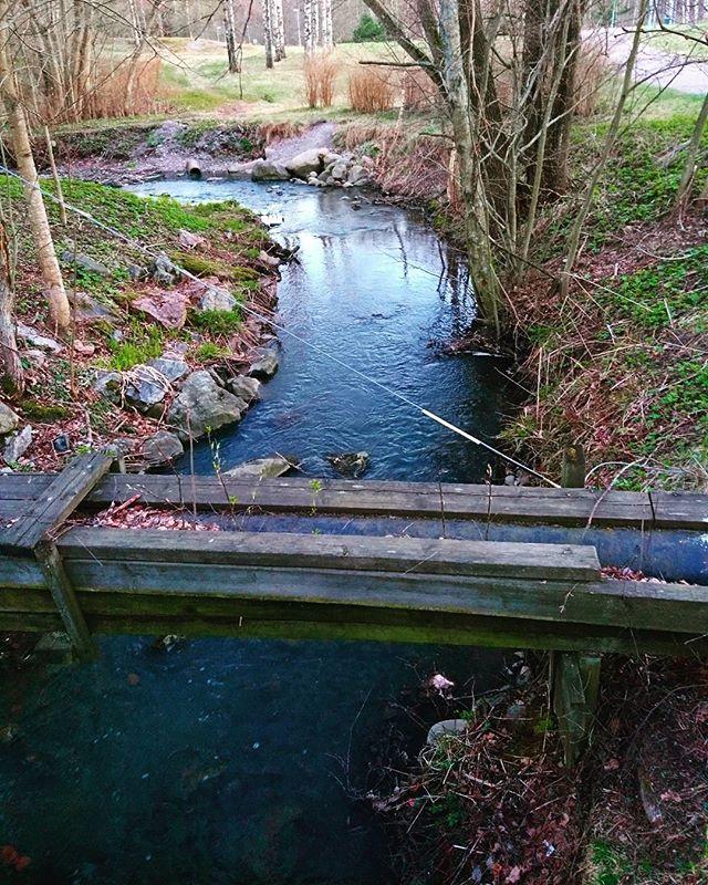 longinoja-longinojakevat-tb-spring-helsinki-suomi100-potd-may-water-nature-naturelovers-ylesaa-mtvsa