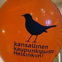 Alkupamaus kansallisen kaupunkipuisto selvityksen tekemiseen Helsinkiin. Pidetään Longinoja esillä usean puroaktiivin voimin. # puisto