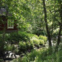 longinoja-alamalmi-helsinki-nature-oldbuilding