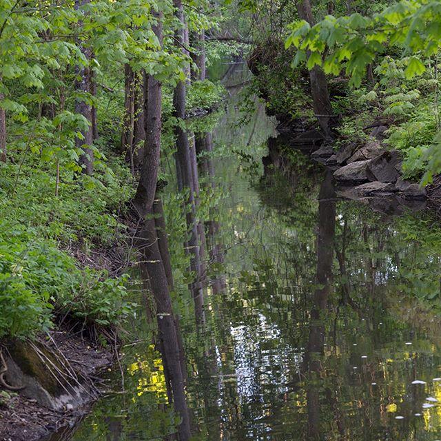 ~Longinoja, kaupunkipuro... an urban brook that flows through Helsinki