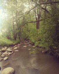 longinoja-urbannaturelovers-creek-urbannature-river-alamalmi-malmi-honorfoto-honorphoto-honor8-huawe