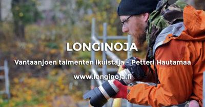 petteri-hautamaa-longinoja-t