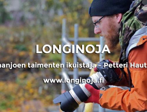 Viisi kysymystä: Vantaanjoen taimenten ikuistaja – Petteri Hautamaa