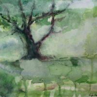 """""""Metsän lumoa 1 ja 2"""" , akvarelleja Malmin Longinojalta"""