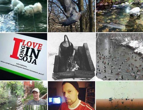 www.longinoja.fi nettisivuilla jo 10 000 tuhatta eri lukijaa. Oletko sinä tutustunut sisältöön, jos olet, mikä oli paras juttu?