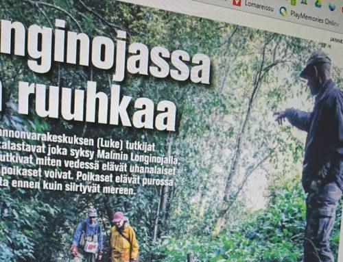 Koillis-Helsingin Lähitieto: Longinojassa on ruuhkaa