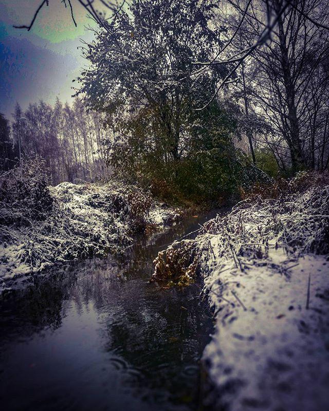 ensilumi-firstsnow-longinoja-autumnleaves-autumn-longinojasyksy-river-creek-urbannaturelovers-urbann-2