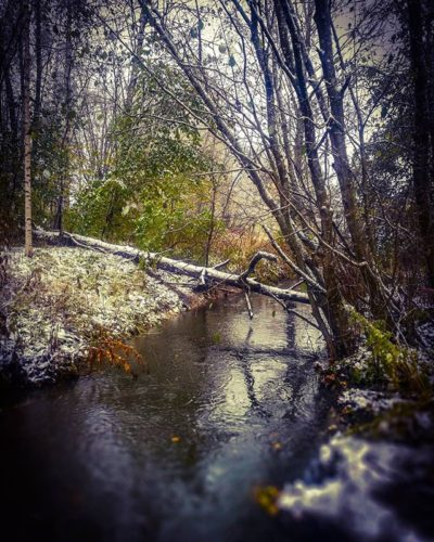 ensilumi-firstsnow-longinoja-autumnleaves-autumn-longinojasyksy-river-creek-urbannaturelovers-urbann