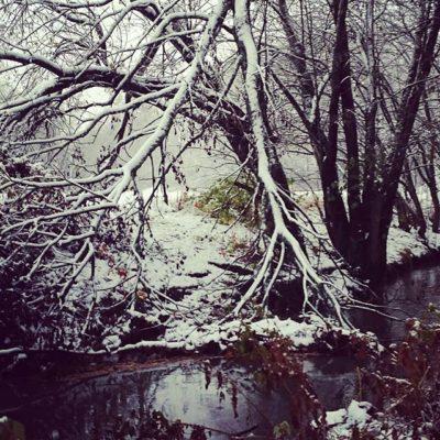 Joy of first snow!