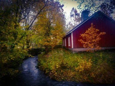 longinoja-autumnleaves-autumn-longinojansyksy-river-creek-urbannaturelovers-urbannature-stream-malmi
