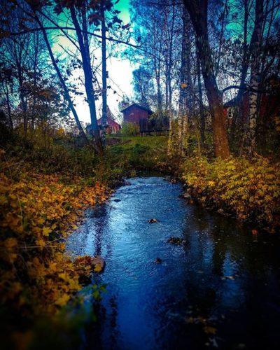 longinoja-autumnleaves-autumn-longinojasyksy-river-creek-urbannaturelovers-urbannature-stream-malmi-1-3