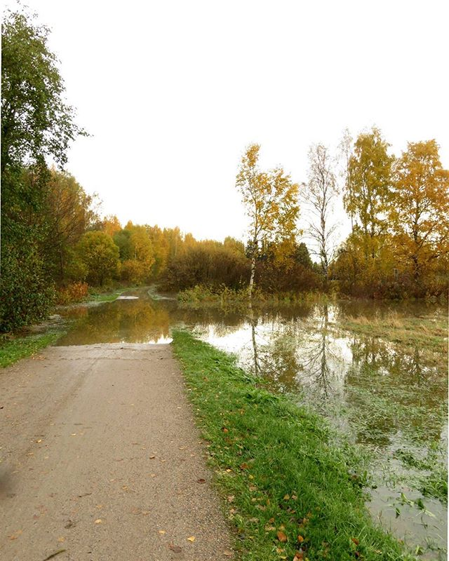 The Longinoja stream is flooding.