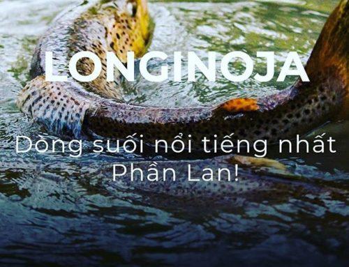 Longinoja.fi – sivuilla nyt myös lyhyt infoteksti Vietnamiksi. Taustakuva @miikkapulliainen