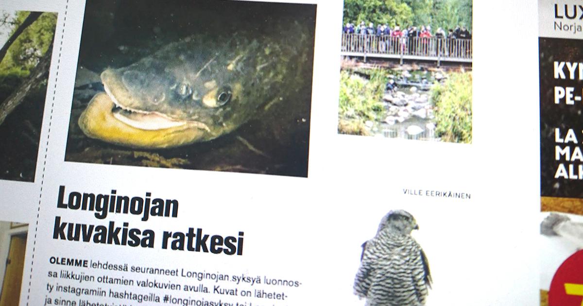 syysseuranta-voittajat-2017-longinoja