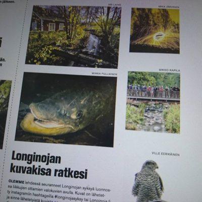 Tänään Koillis-Helsingin Lähitieto - lehdessä Longinoja hienosti esillä.