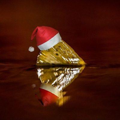 hyvaajoulua-merrychristmas-christmas-fish-fishphotography-catchandrelease-nature-naturephoto-naturep