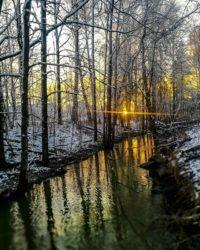 longinoja-longinojansyksy-longinojantalvi-alamalmi-malmi-helsinkirakkaani-visitfinland-creek-river-r