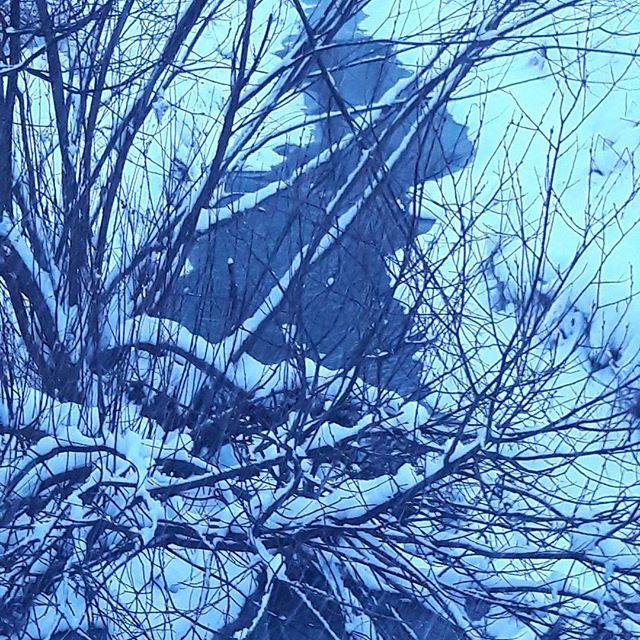 longinoja-longinojantalvi-sininenhetki-talvi-winter-lunta-snow-sno