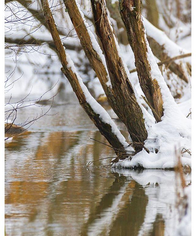 longinoja-vesi-water-lumi-snow-nature-naturephoto-naturephotos-naturephotography-canonphotography-ca
