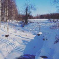 Lähiluonto talvisessa maisemassa  Ei ihan ole koko puro jäässä - onneksi! Lapsilla oli hauskaa kun saivat istua pulkassa. Kylmää oli kun -14°c pakkasta ja tuuli kovasti naamalle. Onneksi oltiin pukeuduttu lämpimästi!!