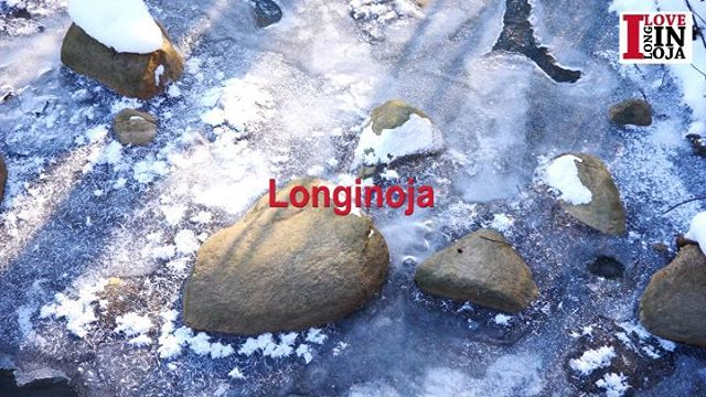 longinoja-longinojakevat-finland-naturelovers-finishnature-instagram-kilpailu-helsinki-lumixgh5-bird