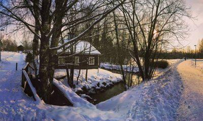 longinoja-stream-nature-winter-malmi-helsinki-finland