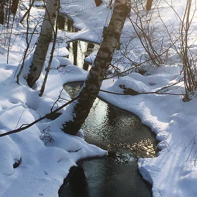 mahtisaa-snow-sun-longinoja