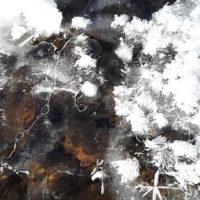 kevattulee-tyomatkanvarrelta-longinoja