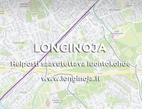 Longinojan saavutettavuus