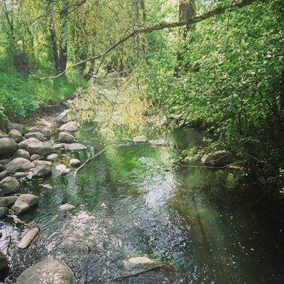 Kevät... Vai olisiko se jo kuitenkin kesä Longinojalla!? Lastemme mielipaikka puron elämän seuraamiseen.